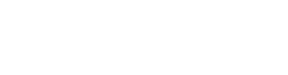 VECTURAFAST Business Pro